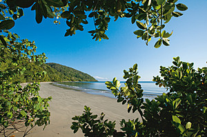 Sandy beach and water's edge seen through trees in Daintree region