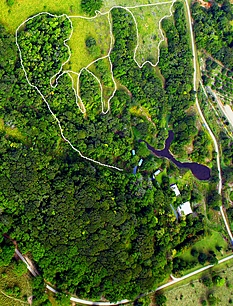 Aerial view of Daintree Valley Haven rainforest, gardens, buildings