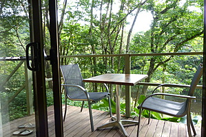 Table and chairs on verandah overlooking rainforest